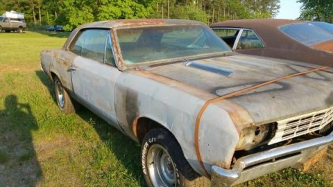 1967 Chevrolet Malibu Chevelle for sale