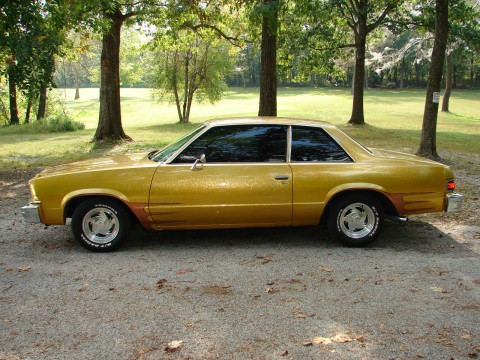 1979 Chevrolet Malibu EFI 350 for sale