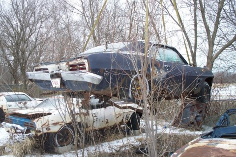 1969 Pontiac Firebird Trans AM   Project for sale