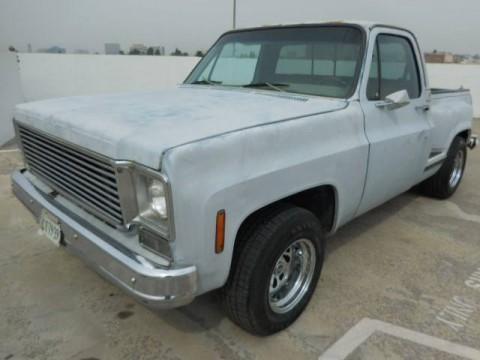 1975 Chevrolet C-10 Pickup Truck Restoration Project for sale