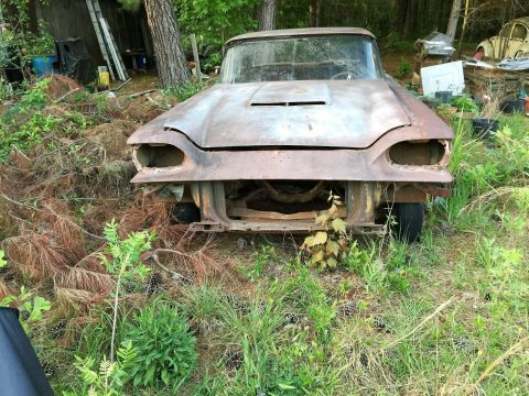 Family car 1959 Ford Thunderbird project for sale