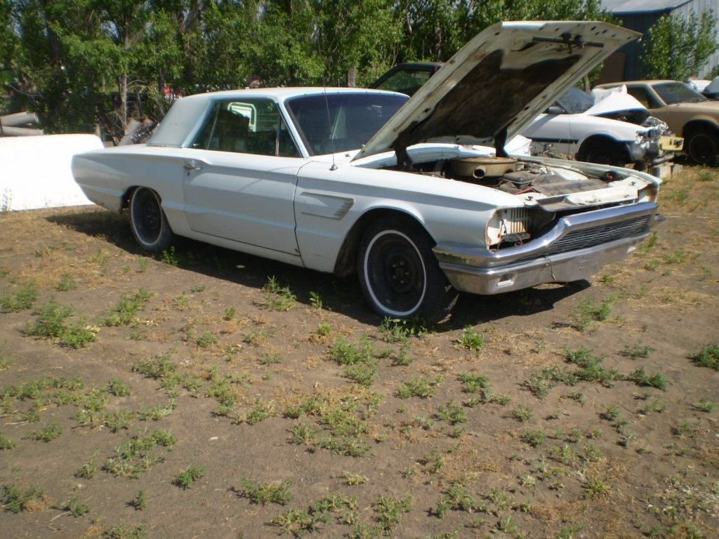 Easy fix 1965 Ford Thunderbird Base project