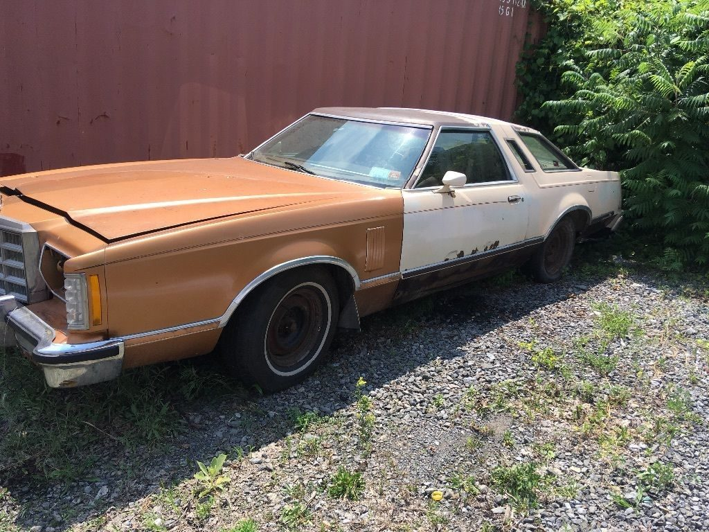 New parts 1979 Ford Thunderbird Unique project