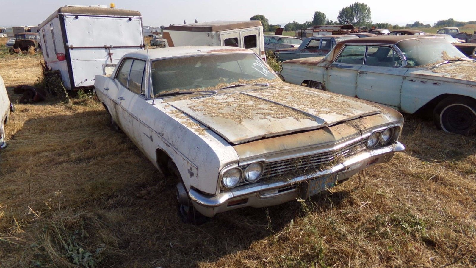 Pretty Rare 1966 Chevrolet Impala Sport Sedan Project For Sale