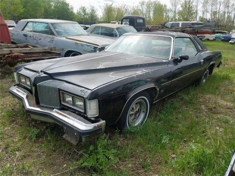 some damage 1976 Pontiac Grand Prix project for sale