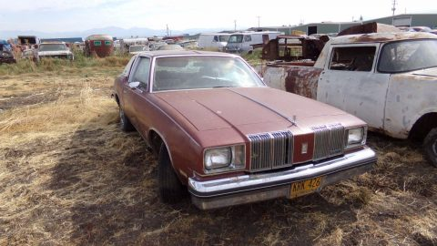T-top 1979 Oldsmobile Cutlass Supreme project for sale