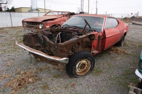 Cobra clone 1971 Ford Mustang project for sale