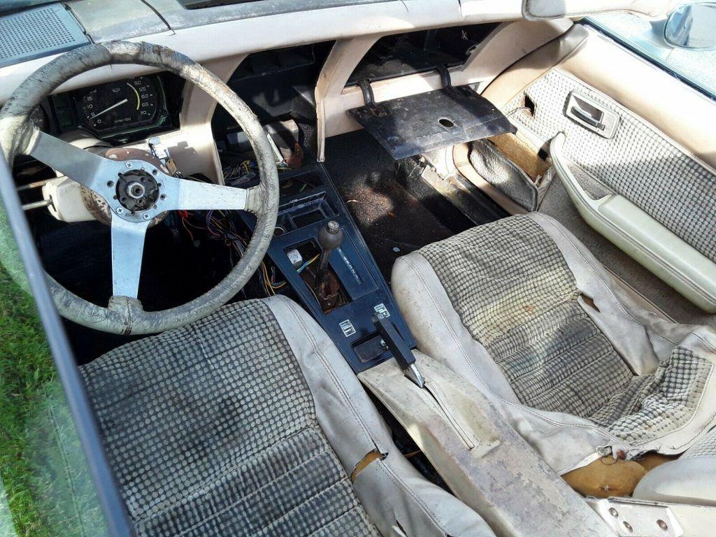 needs TLC 1979 Chevrolet Corvette project