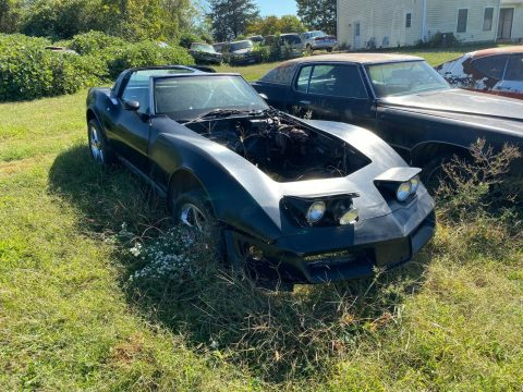 solid 1981 Chevrolet Corvette project for sale