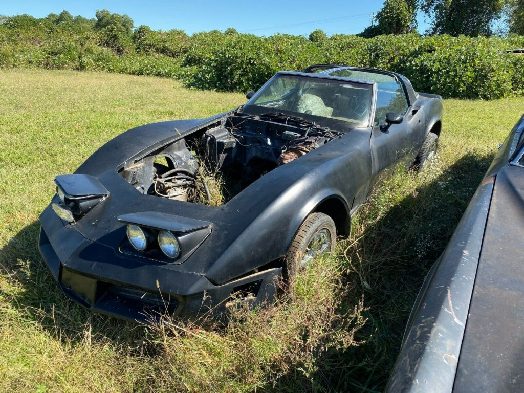 solid 1981 Chevrolet Corvette project
