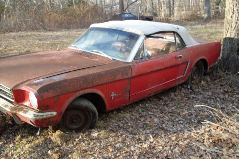 barn find 1964 Ford Mustang Convertible project for sale
